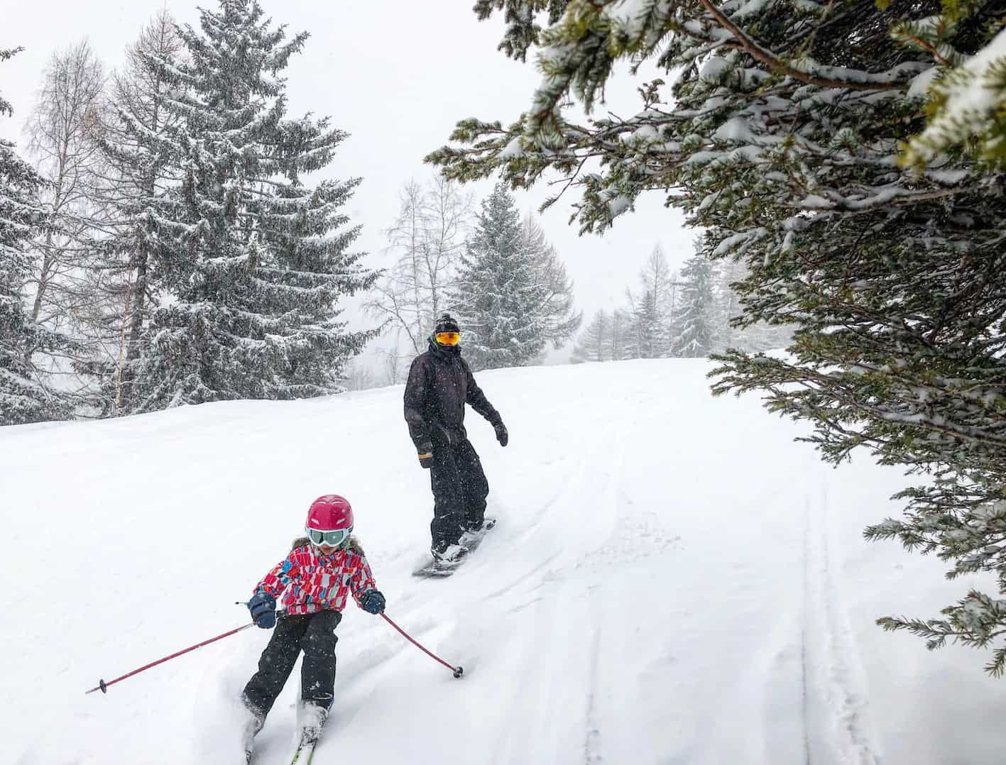 Les Houches review